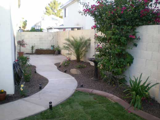 Chandler yard after landscape remodel