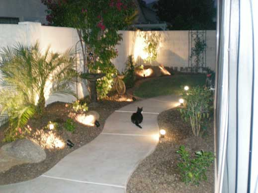 tropical landscape lighting lights on plants and mounds