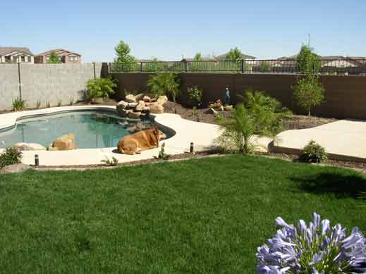 This is a small yard landscape design with a flowing sidewalk into a