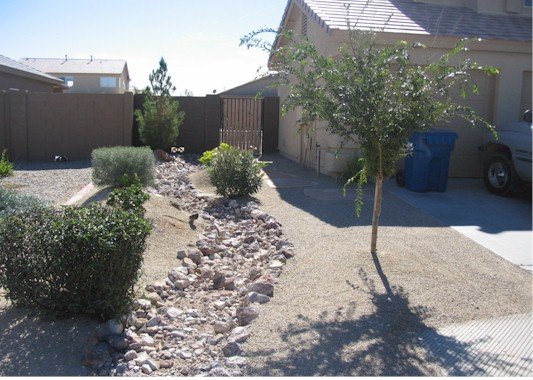 Desert Landscape Design with Desert adaptable plants