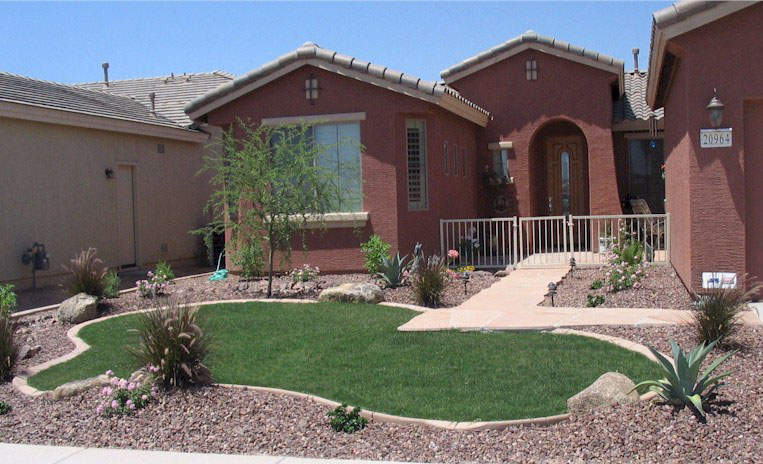 Arizona tropical landscape design with sod palm trees for Small front yard design