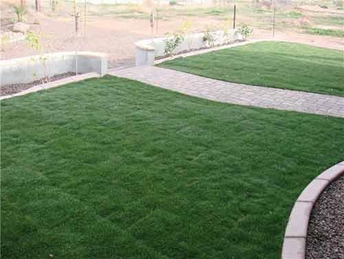 front-grass-paver-sidewalk