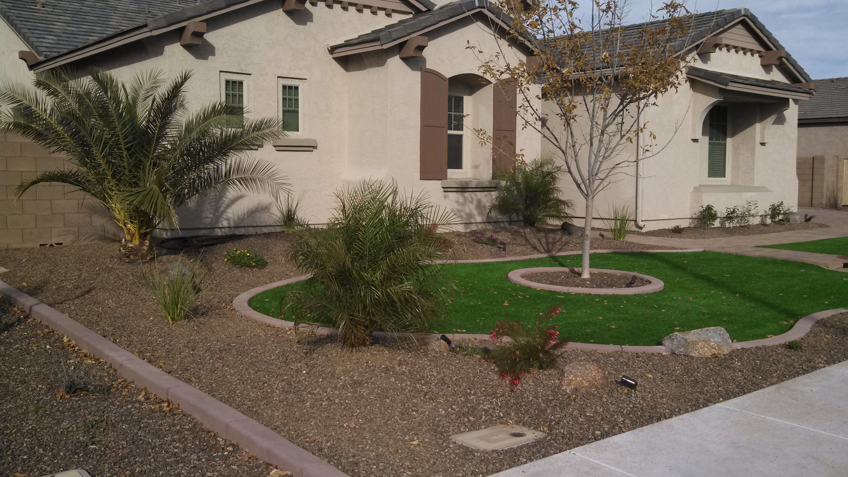 Landscape design archives arizona living landscape design for How much does it cost to landscape a front yard